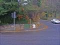 Image for Park Road, Barnsley, Milestone