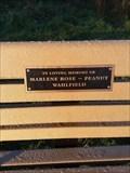 Image for Marlene Rose ~ Peanut Wahlfield - Comstock Park, Michigan