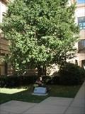 Image for Revolutionary War Memorial  -  New Philadelphia, OH