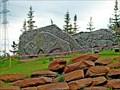 Image for Buffalo - Fort McMurray, Alberta