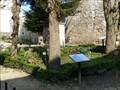 Image for Plantes tinctoriales et médicinales du Château de Dourdan, Essonne, France