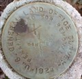 Image for US General Land Office Survey - S18 S17 - Ocala National Forest