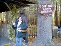 Image for I Can't Bear To Leave, Bushkill, PA