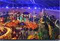 Image for Bellagio Conservatory & Botanical Gardens Webcam - Las Vegas, NV