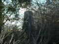 Image for Belbora geodetic station, NSW