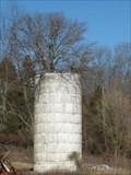 Image for Tree Growing Silo along Hwy TN75 - Blountville, TN