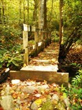 Image for Jones Branch Bridge #1 - Appalachian Trail - Erwin, TN