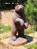 Image for Gilroy Gardens Bear - Gilroy, CA