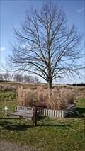 Image for Vriendschapsboom, Gijvelde, France