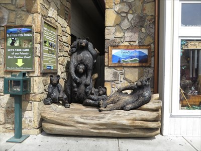 Paws for Thought - Artistic Seating - Gatlinburg, TN.