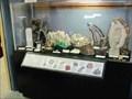 Image for Museum of World Treasures - Wichita, KS