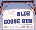 Image for Blue Goose Run - Illinois Corn Maze