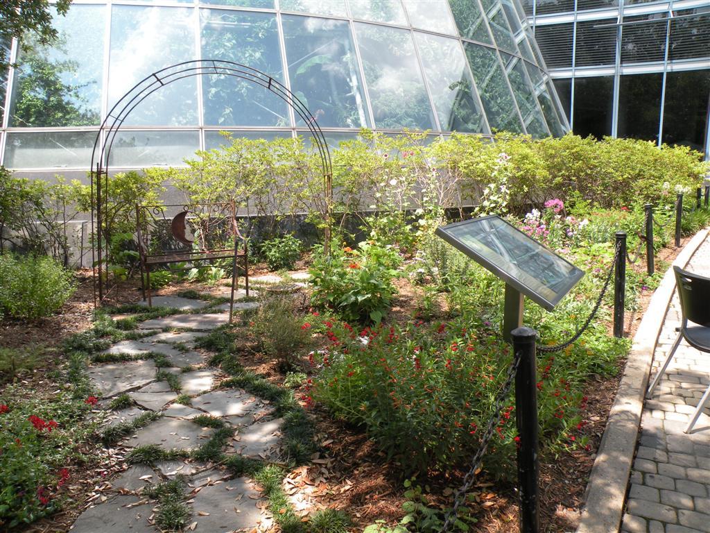 Fairchild Tropical Botanic Garden Best Idea