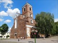 Image for Cathedral Basilica of apostles St. Peter and St. Paul - Kaunas, Lithuania