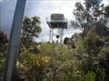 Image for Mumbulla Mountain, Bunga, NSW