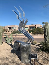 Blowing in the WInd, Looking N, Fountain Hills, Arizona
