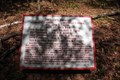 Image for Johnson's Brigade Plaque  - Chickamauga National Battlefield