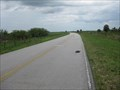 Image for Big Cypress Reservation Turtle Xing - FL