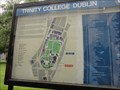 Image for You Are Here at Trinity College