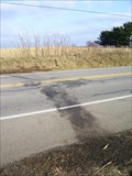 Image for Homemade Plane Crash, southeast of Jamestown, PA