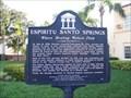 Image for Espiritu Santo Springs - Safety Harbor, FL