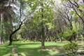 Image for Jardín botánico Martín Cárdenas, Cochabamba, Bolivia