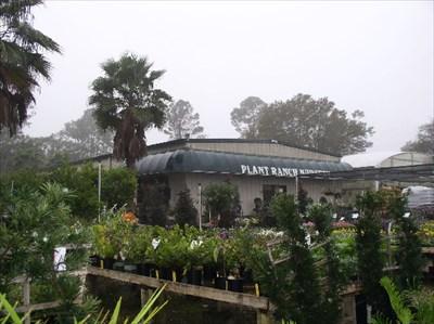 Plant Ranch Nursery Jacksonville Fl Greenhouses And Nurseries On Waymarking