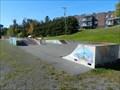 Image for Parc municipal de planches à roulettes, Lac-Etchemin, Qc, Canada