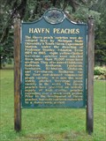 Image for Haven Peaches