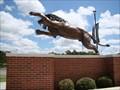 Image for Numa - University of Arkansas - Ft. Smith