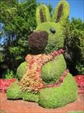 Image for Bunny - Cypress Gardens, FL