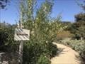 Image for Reata Park Arboretum - San Juan Capistrano, CA
