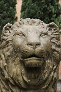 Image for Lion place de la Basoche - Lyon - France