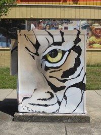 Tiger Face, Street Side, Looking NE, Hayward, CA
