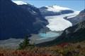 Image for Saskatchewan Glacier - Banff National Park, Alberta