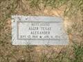 """Image for Alger """"Texas"""" Alexander - Longstreet Cemetery - Walker County, TX"""