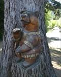 Image for Female Bear - Duncans Mills, CA