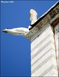 Image for Gargoyles at Duomo di Santa Maria Assunta / Cathedral of the Assumption of St. Mary (Pisa, Tuscany)