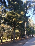 Image for Helen V. Humphreys - Costa Mesa, CA