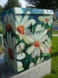 "Image for ""Daisies"" - Coeur d'Alene, ID"