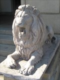 Image for Social Club  Lion - Los Angeles, CA