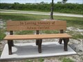 Image for Adam Ostfeld - Bay Pines, FL