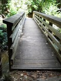 Image for Bridge #4 - Little Stony National Recreation Trail - Dungannon, VA