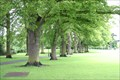 Image for Abbey Park -  Pershore, UK