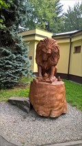 Image for Lev/Lion- ZOO Ostrava, Czech republic