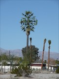 Image for Landau Blvd Cell Tower, Cathedral City CA