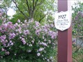 Image for Lilac Time - Lombard, IL