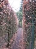 Image for Tatton's Maze, Tatton Park, Knutsford, Cheshire, England, UK