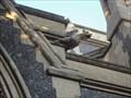 Image for Southwark Cathedral Gargoyle  -  London, UK