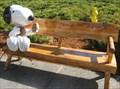 Image for Snoopy webcam - Santa Rosa, CA